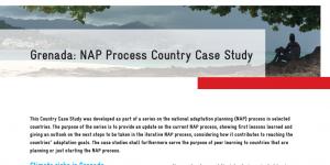 nap-process